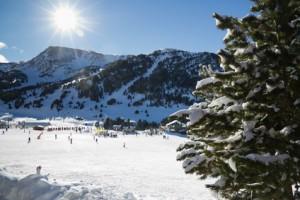 Ein Gebirge mit Schnee und einem Nadelbaum im Vordergrund.