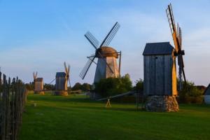 Windmühlen auf einem Feld.